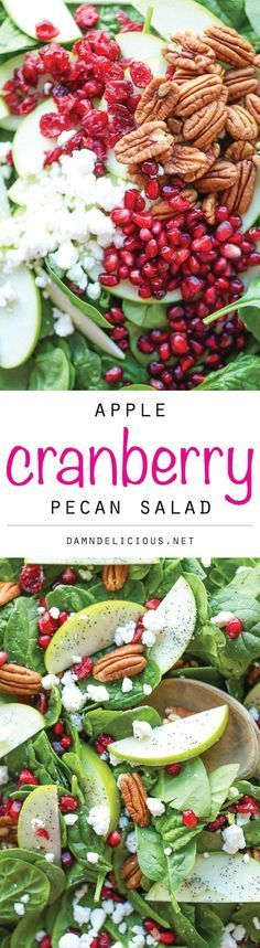 Apple Cranberry Pecan Salad - The best fall flavors come together in this light and refreshing spinach salad tossed in the most amazing lemon vinaigrette!