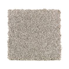 - Carpets - Home Decorators Collection Carpet Sample - Gemini I Color - Faint Maple Texture 8 in. x 8 Home Decorators Collection Carpet Sample - Gemini I Color - Faint Maple Texture 8 in. x 8 in. Dark Carpet, Brown Carpet, Beige Carpet, Modern Carpet, Carpet Decor, Home Carpet, Stair Carpet, Textured Carpet, Patterned Carpet