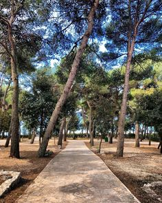 Solitude is fine but you need someone to tell that solitude is fine.  #peaceful #tourism #Croatia #pakostane #campkozarica #nature #sea #honoredebalzac Need Someone, Solitude, Kos, Croatia, Tourism, Sidewalk, Places, Nature, Instagram