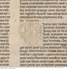 Unfinished business: this manuscript was intended to have illuminated initials, but for some reason they were never completed, which gives u...