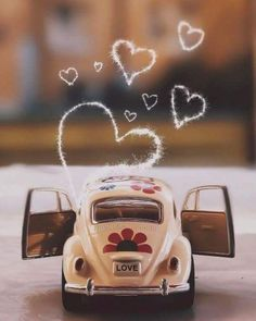 New vintage flowers photography wallpaper backgrounds love Ideas Miniature Photography, Cute Photography, Tumblr Photography, Popular Photography, Photography Flowers, Photography Lighting, Photography Magazine, Wedding Photography, Volkswagen