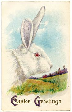 Royalty Free Image - Easter Bunny - The Graphics Fairy