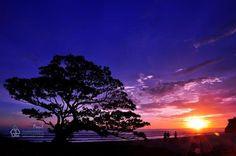 "Pantai Poktunggal yang mirip bonsai saat sunset.  Lokasi: Tepus, Gunungkidul, Yogyakarta, Indonesia  Koordinat GPS: S8°9'17.6"" E110°37'17.3"""