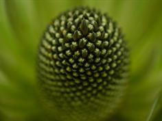 Espiral es. Fotografía Fernando Ramos