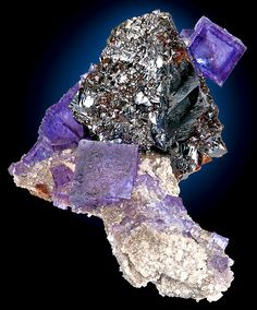 shiny Sphalerite crystal set among Fluorite cubes on Dolostone 7.5 cm by 7.4 cm by 5.6 cm