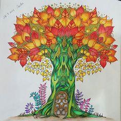 Floresta Encantada Jardim Secreto Arvore