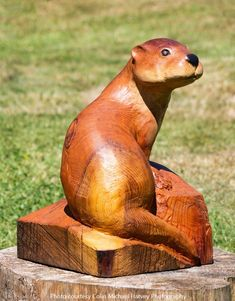 Beech Tree, Wood Carving Patterns, Carven, Wood Carvings, Dremel, Rhodes, Chainsaw, Otters, Norfolk