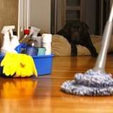 Vinyl floor clean: mix one cup of cider vinegar with a gallon of hot water and use a damp mop to clean, rinsing the mop frequently with hot water.
