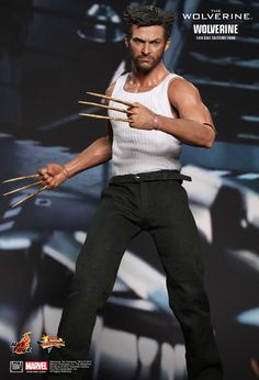 Hot Toys : The Wolverine - Wolverine 1/6th scale Collectible Figure