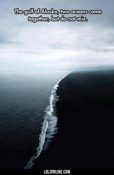 The Gulf Of Alaska, Two Oceans Come Together#funny #lol #lolzonline