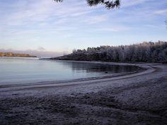 naturensdronning: Dagens utvalgte - 1. jan 2016