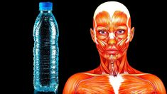 What is water fasting? Intermittent fasting is gaining huge popularity as a dietary option, but what actually happens to your body whe. Drinking Only Water, What Is Water, Bone Density, Water Fasting, Calorie Intake, Lose Weight Naturally, Human Condition, Good Fats, Want To Lose Weight