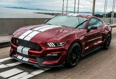 Ford Confirms 700 Horsepower Mustang For 2019 CarBuzz Mustang Cabrio, Ford Mustang Shelby Gt500, Ford Shelby, Mustang Fastback, Ferrari, Lamborghini, Luxury Sports Cars, Sport Cars, Chevrolet Camaro
