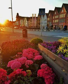 """2,769 likerklikk, 12 kommentarer – Mitt Bergen (@mittbergen) på Instagram: """"Summer in Bergen  : @janolebirkelund"""""""