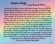 Rainbow Bridge... I have several friends waiting for me there!