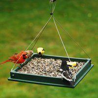 Bird Feeders, Bird Feeder, Squirrel Bird Feeder