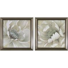 Shop for Decor Therapy Antiqued White Flowers in Stainless Steel Finish Plastic Frame Wall Art (Set of Get free delivery On EVERYTHING* Overstock - Your Online Art Gallery Store! Get in rewards with Club O! Painting Frames, Painting Prints, Wall Art Prints, Framed Prints, Couple Painting, Metal Wall Art, Framed Wall Art, Wall Art Sets, White Flowers
