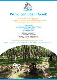 Pic nic con bagnetto, e guai a chi ruba la merenda: è la giornata Dog is good :http://www.qualazampa.news/event/pic-nic-con-bagnetto-e-guai-a-chi-ruba-la-merenda-e-la-giornata-dog-is-good/