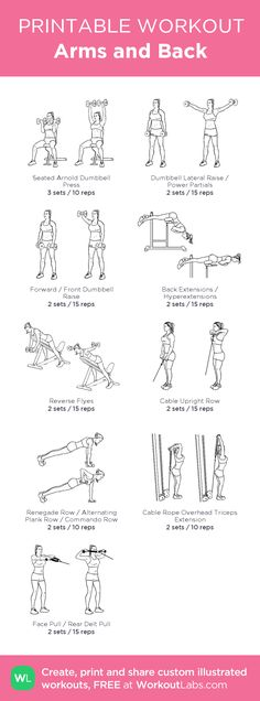 Arms and Back: my visual workout created at WorkoutLabs.com