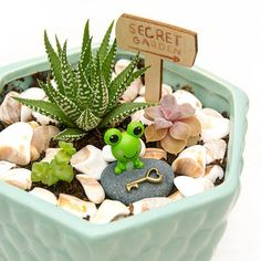 Magical Miniature Fairy Gardens with Succulents – DIY Gift Idea