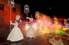 2013 Dunedin Midwinter Carnival. Alan Dove Photography Carnival, Concert, Photography, Image, Photograph, Carnavals, Fotografie, Concerts, Photoshoot