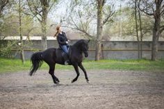 Exercises To Help Keep Your Heels Down In Your Riding Position | LIVESTRONG.COM