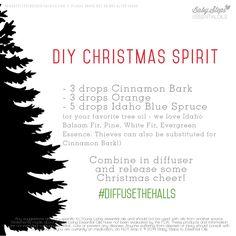 DIY Christmas Spirit - Cinnamon Bark, Orange, Idaho Blue Spruce #DIFFUSETHEHALLS To order: https://www.youngliving.com/signup/?site=US&sponsorid=1400881&enrollerid=1400881 Lets talk oils, www.fb.com/essentialliving180