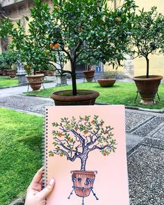 [Photo by lada_ash on Instagram] Cozy garden patio Чудесный внутренний дворик дворца Медичи-Риккарди #gardenpatio #italy #firenze #Florence #ladaashikovasketchbook #sketchbook #sketch #draw #drawing #orangetree #travel #trip #palazzomediciriccardi