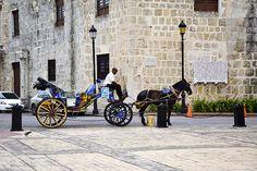 Viaje a Punta Cana 2014 (299)