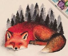 Эскиз спящей лисы