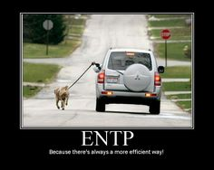 ENTP-Life is a constant pursuit of 'a better way'.