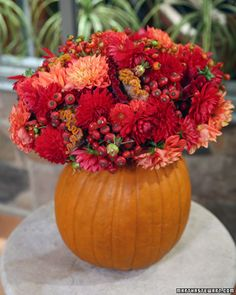 Pumpkin Vase Flower Arrangement  A pumpkin is turned into a perfect vase for fall. Then we filled it with seasonal flowers such as as dahlias, cockscombs, rose hips, and mini crab apples.