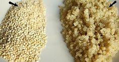 Il consumo di quinoa si è diffuso negli ultimi anni anche in Europa, nonostante sia un alimento base della dieta di paesi come Bolivia, Perù ed Ecuador, dove viene consumata da almeno 5000 anni. Il 20