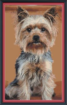 Yorky Terrier, Terrier Dogs, Iron On Fabric, Yorkshire Terrier Dog, Dog Signs, Pebble Art, Cross Stitch Patterns, Etsy, Illustration