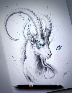 CULTURE N LIFESTYLE — Enchanting Animal Illustrations by Jonas Jödicke...