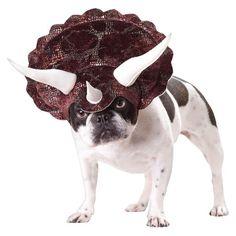 Buyseasons Triceratops Dog Costume.