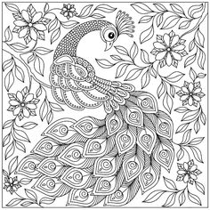 Peacock Doodle 2 coloring mural by Magic Murals. For the biggest coloring canvases available anywhere, choose our giant ColorMes! Peacock Coloring Pages, Bird Coloring Pages, Pattern Coloring Pages, Printable Adult Coloring Pages, Coloring Books, Coloring Canvas, Peacock Drawing, Doodle 2, Tinta China