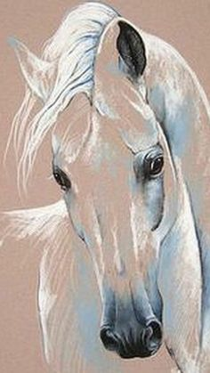 33 Horse Drawing Ideas With Crayon - Art Horse Drawings, Animal Drawings, Art Drawings, Horse Head Drawing, Painting Illustrations, Drawing Animals, Horse Artwork, Pastel Art, Pastel Drawing