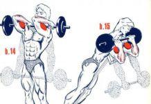 Fitness : Biceps3…