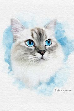 Watercolor Cat, Watercolor Animals, Watercolor Paintings, Watercolor Portraits, Animal Paintings, Animal Drawings, Labrador Puppies, Retriever Puppies, Corgi Puppies