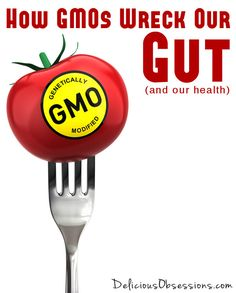 Today I want to talk about GMOs. They are all over the news right now, as several states (Colorado included) have GMO labeling initiatives on the ballot for