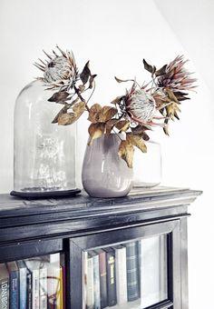 Garden Flowers - Annuals Or Perennials Arredare Con I Fiori Secchi - Living Corriere
