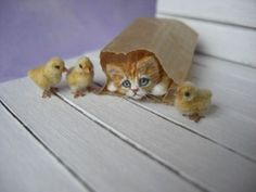 Miniature-GingerTabby-Kitten-with-Chicks-OOAK-by-OREON-Dolls-House-cat-1-12