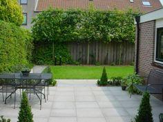 Beautiful slate trees against the fence - Innen Garten - Eng Back Gardens, Small Gardens, Outdoor Gardens, Dream Garden, Home And Garden, Espalier, Garden Privacy, Garden Screening, Contemporary Garden