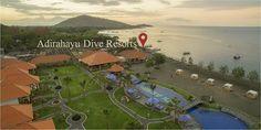 Adirahayu the 401 Dive Pemuteran - Bali