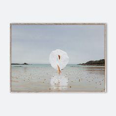The world of French photographer Maia Flore mixes reality with a large dose of imagination. In The Wind plays with contrasting forms and tones with three brightly coloured dresses flowing in the wind, set against a soft coastal landscape. While the landscape provides a calming backdrop, a dash of colour draws you in.
