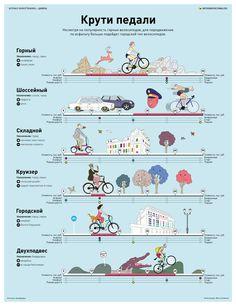 ИНФОГРАФИКА: как выбрать велосипед?  пока лето купить велик