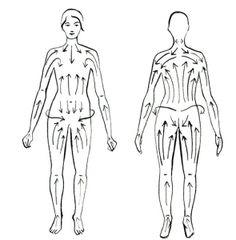 BODY BRUSHING/CEPILLADO EN SECO | THE DRAWER OF BEAUTY