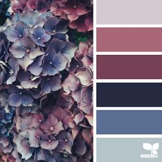 SnapWidget | today's inspiration image for { flora tones } is by @auntieclaras ... thank you Clara for another gorgeous #SeedsColor inspiration image share!