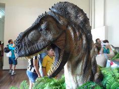 Museu Nacional - RJ - Arte com Dinossauros - Artista Maurílio Oliveira